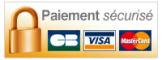Logo securise payment