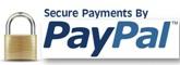 securise paypal logo